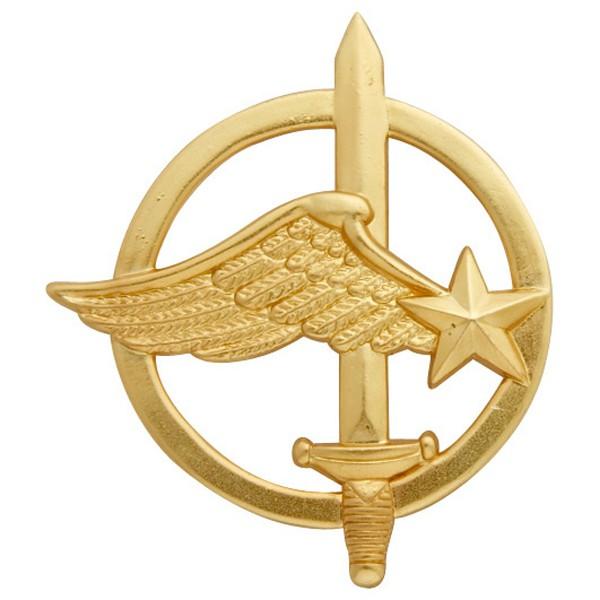 Les insignes de béret  Insign10