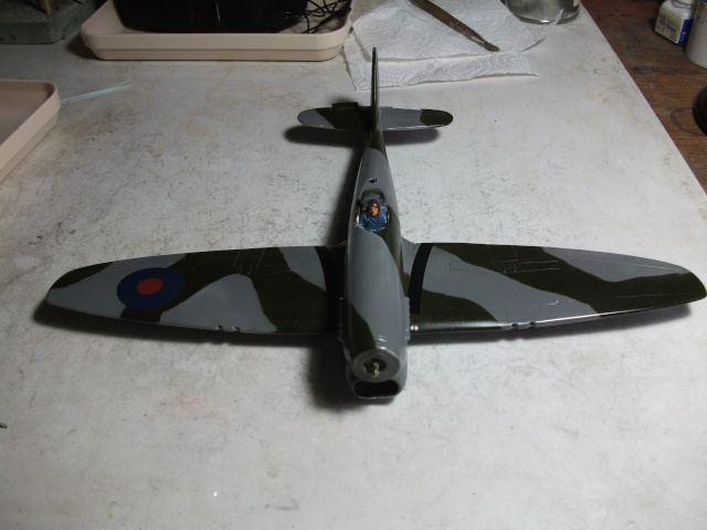 Hawker Tempest & Typhoon in 1:48. 115