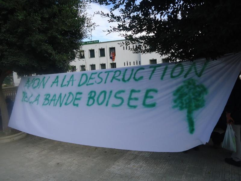 Marche à Aokas contre la destruction de la bande boisée  - Page 2 Dsc06634