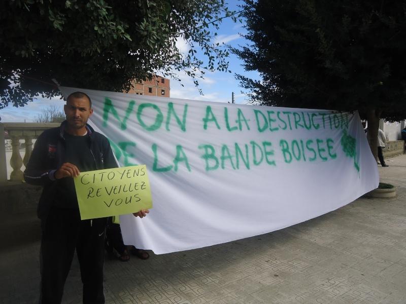 Marche à Aokas contre la destruction de la bande boisée  - Page 2 Dsc06636