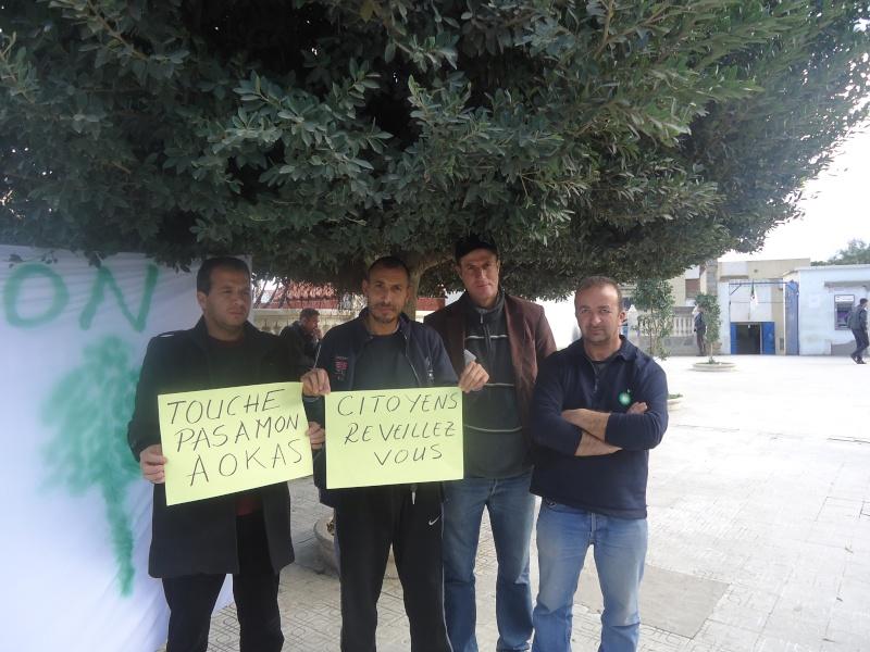 Marche à Aokas contre la destruction de la bande boisée  - Page 2 Dsc06637