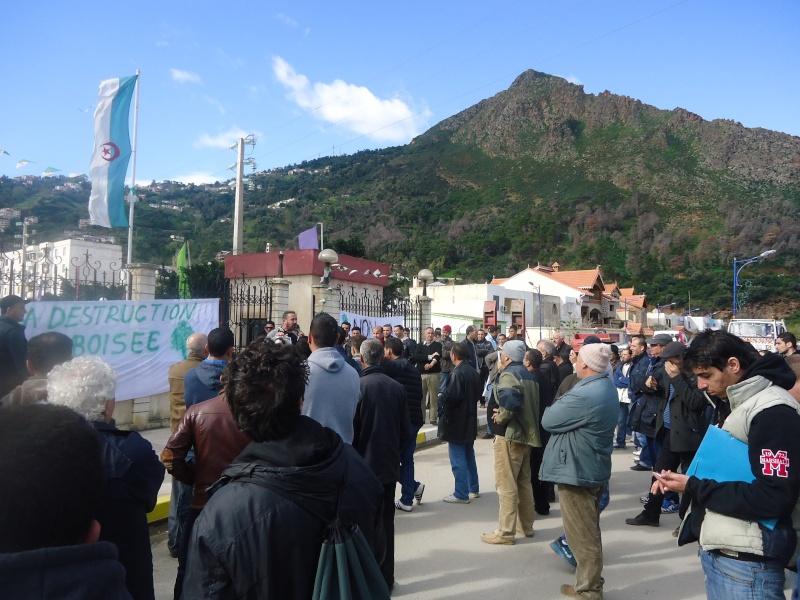 Marche à Aokas contre la destruction de la bande boisée  - Page 2 Dsc06711