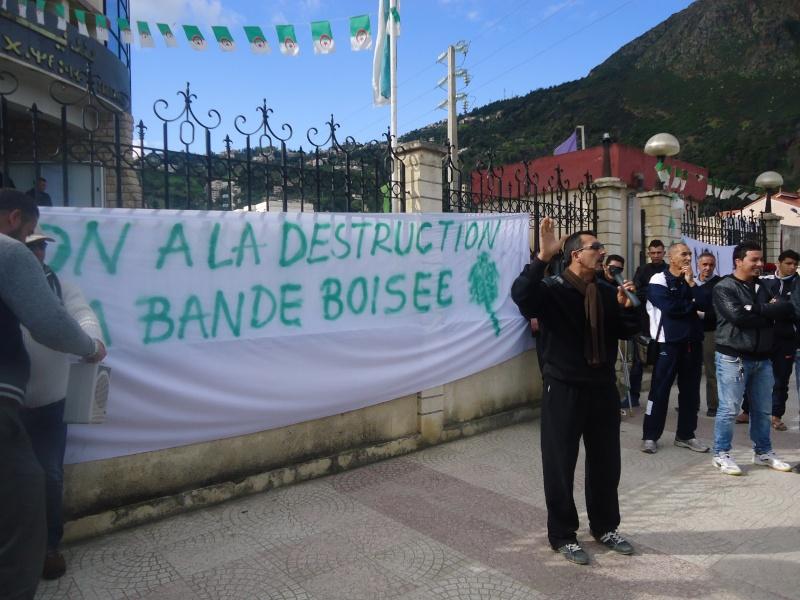 Marche à Aokas contre la destruction de la bande boisée  - Page 2 Dsc06715
