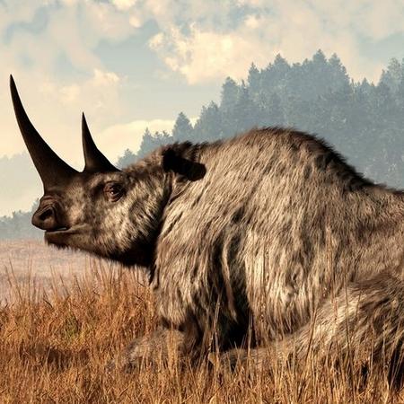 Demande d'ajout de monstres dans le bestiaire - Page 2 Rhino_10