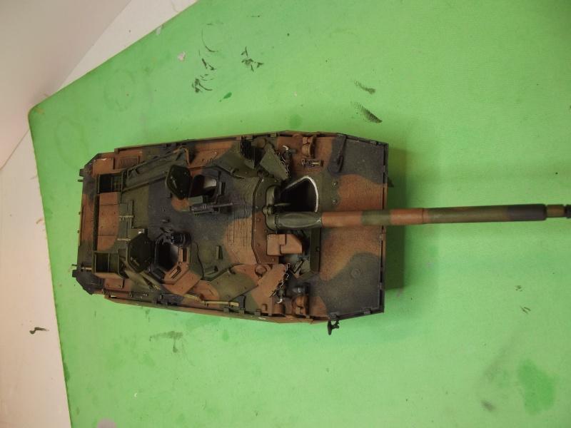 AMX 10 RCR (TIGRE MODEL) 1.35 - Page 2 Dscf0728