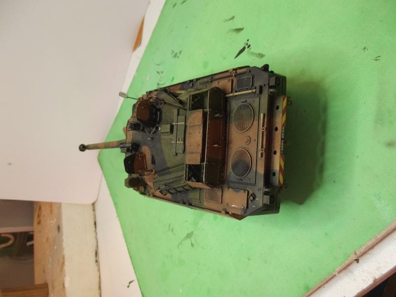 AMX 10 RCR (TIGRE MODEL) 1.35 - Page 2 Dscf0729