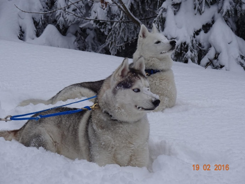 Saskia et Jiro, partie 2 - Page 25 D_anne10