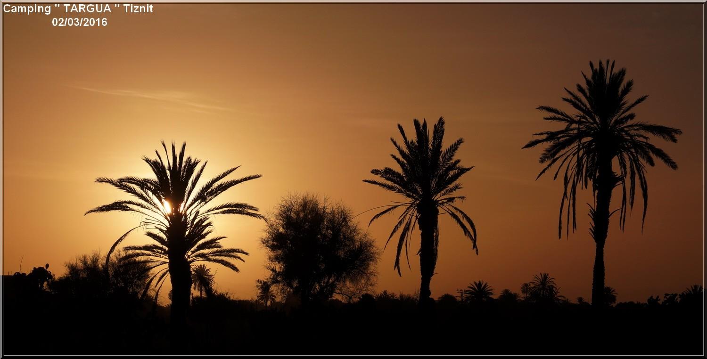 [Maroc Camp/Dernières nouvelles] 7 h 1/2 le jour se lève au Camping TARGUA de Tiznit  Dsc04314