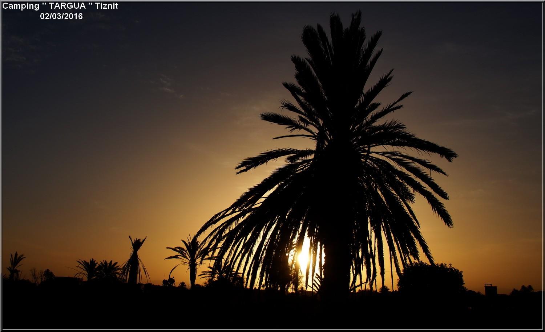 [Maroc Camp/Dernières nouvelles] 7 h 1/2 le jour se lève au Camping TARGUA de Tiznit  Dsc04315
