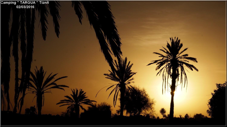 [Maroc Camp/Dernières nouvelles] 7 h 1/2 le jour se lève au Camping TARGUA de Tiznit  Dsc04316