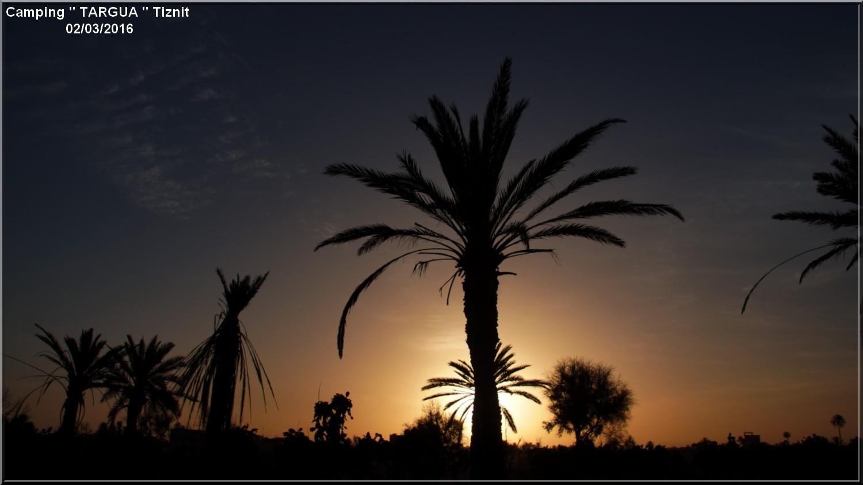 [Maroc Camp/Dernières nouvelles] 7 h 1/2 le jour se lève au Camping TARGUA de Tiznit  Dsc04318