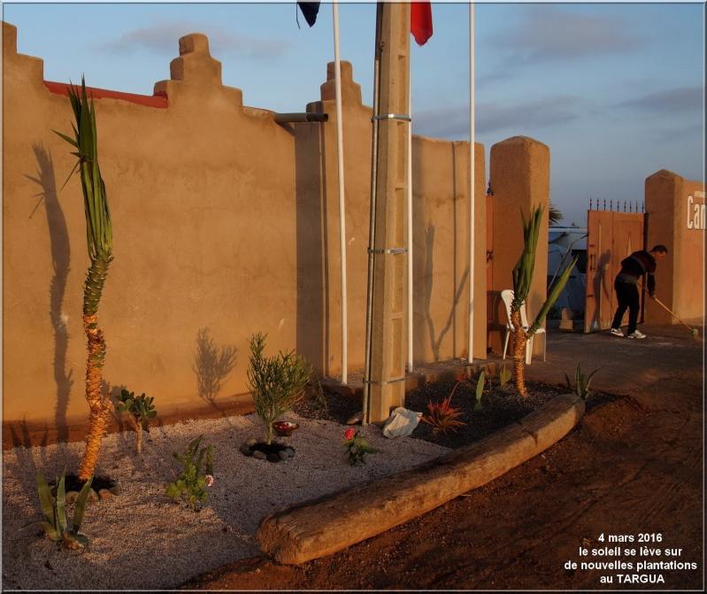 [Maroc Camp/Dernières nouvelles] Les améliorations se poursuivent au TARGUA Dsc04611