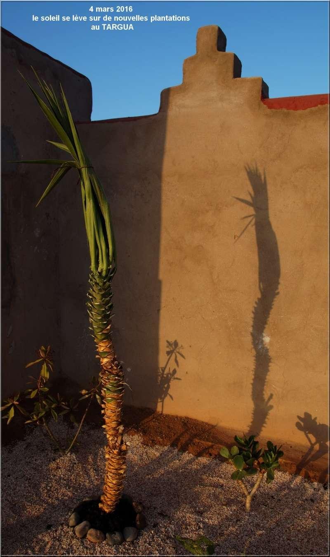 [Maroc Camp/Dernières nouvelles] Les améliorations se poursuivent au TARGUA Dsc04622