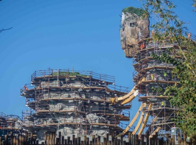 Disney's Animal Kingdom à Walt Disney World Resort - Page 4 211