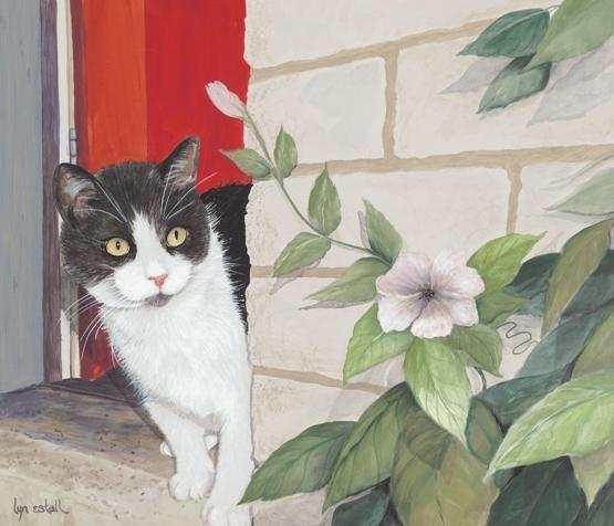 Les chats - Page 36 635b9a10