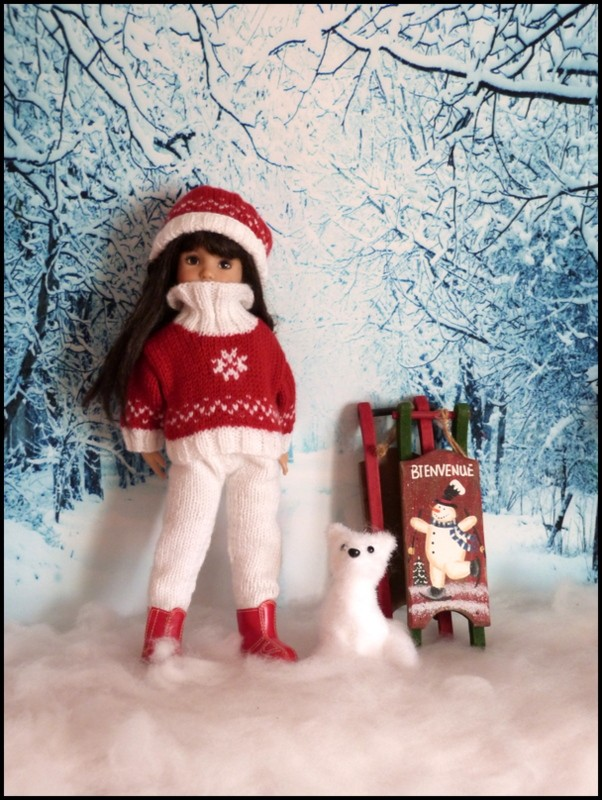 Nouvel hiver P5 nouvelles photos - Page 4 P1400421