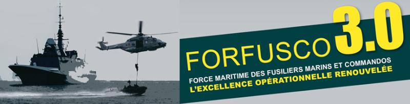 Les actualités de la Marine Française - Page 35 211