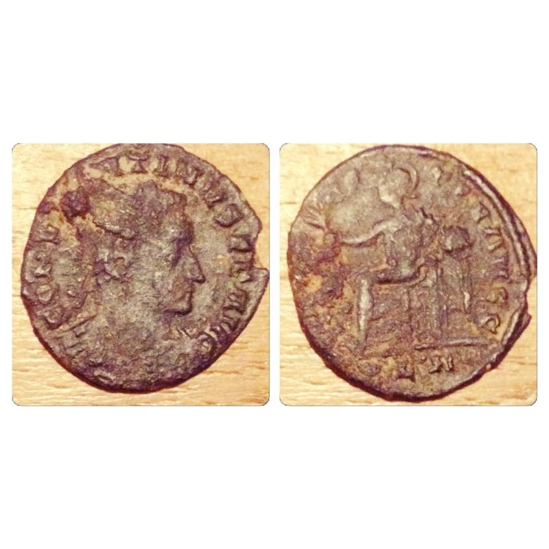 romaine a échanger Img_5412