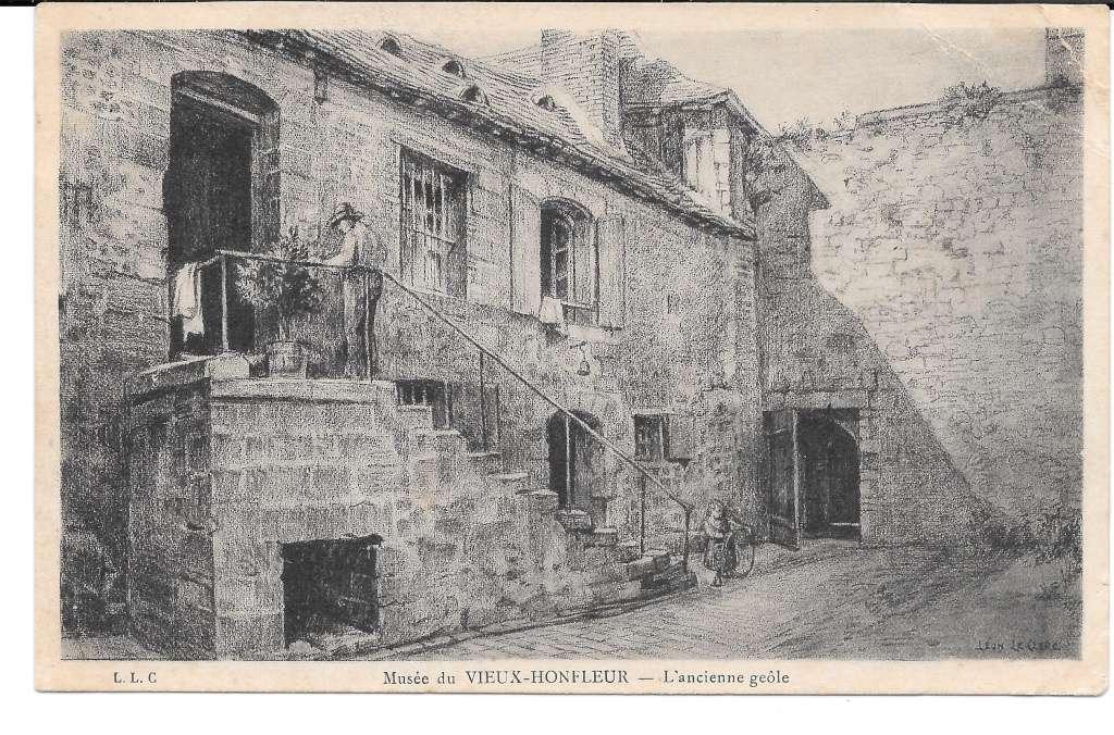 Racines à Honfleur 1013