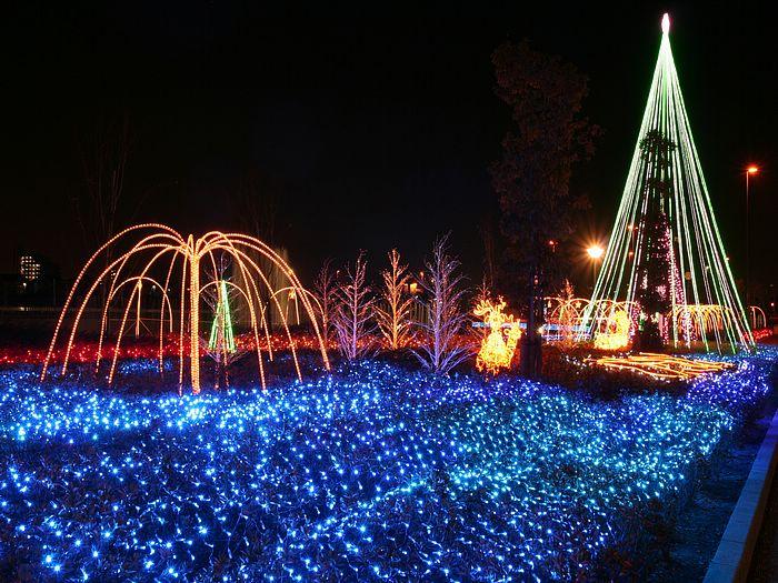 Les illuminations de Noël pour les fêtes 2.015   2.016 ! - Page 6 4f645410