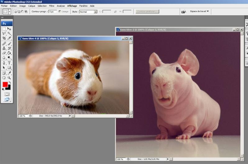 Tutoshop : les tutos pour photoshop ! Tuto_a14