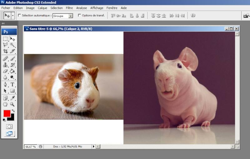Tutoshop : les tutos pour photoshop ! Tuto_a19