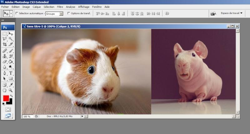 Tutoshop : les tutos pour photoshop ! Tuto_a21