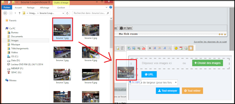 MÉTHODE : Comment insérer une photo sur le forum Paint_20