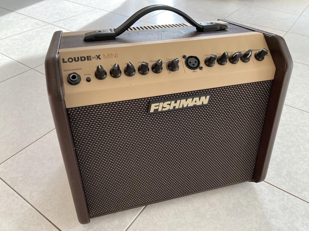 Fishman Loudbox mini F110