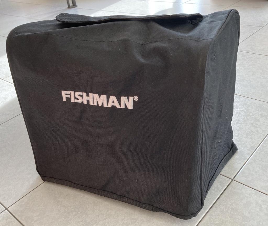 Fishman Loudbox mini F410