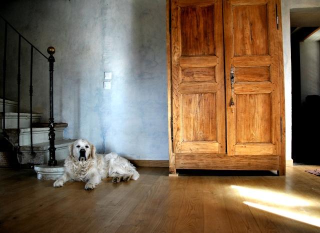Galerie photos de Tiphaine Dsc_0210