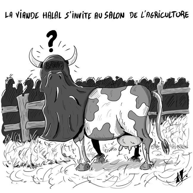 humour - Page 39 Halal_10
