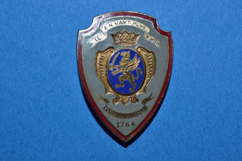 Insigne du 3° HUSSARD période VICHY. 1941. ARMEE D'ARMISTICE / CAVALERIE.- ESC 1  A CLOTURER. Dsc_3010