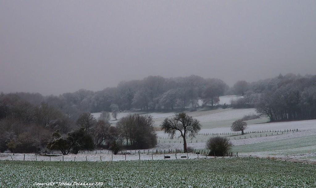 Il a neigé sur ma campagne Picarde +1 Sans_t14