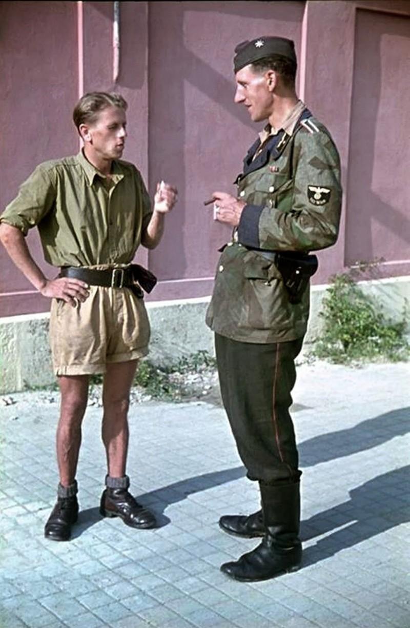 L'influence du camouflage allemand ww2, de nos jours. - Page 6 298810