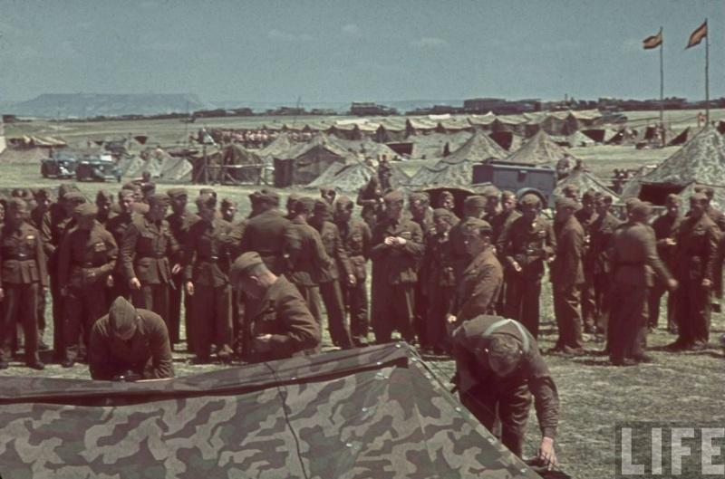 L'influence du camouflage allemand ww2, de nos jours. - Page 6 Ez1010