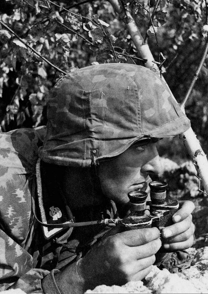 L'influence du camouflage allemand ww2, de nos jours. - Page 5 Fzer10