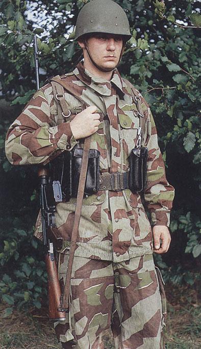 L'influence du camouflage allemand ww2, de nos jours. - Page 6 G1067910