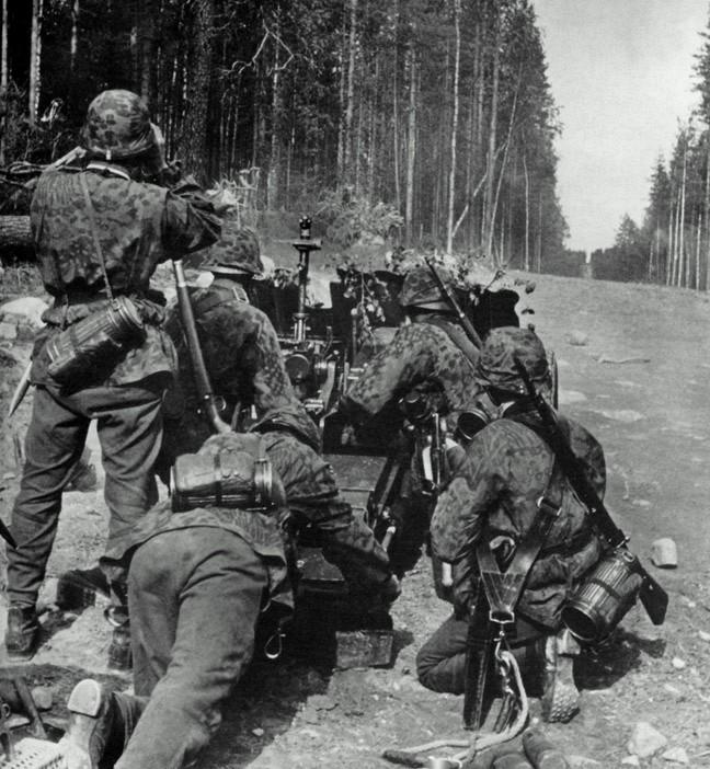 L'influence du camouflage allemand ww2, de nos jours. - Page 5 V10