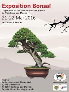 Thorigny sur marne (77) LES 21 ET 2 mai 2016 16052110