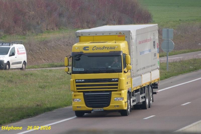 Coudreau (Loudun, 86) P1330413