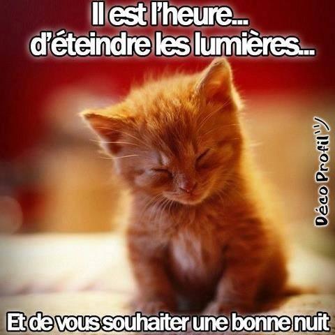 Entrez et tapons la causette (archive 6) ... - Page 37 58071211
