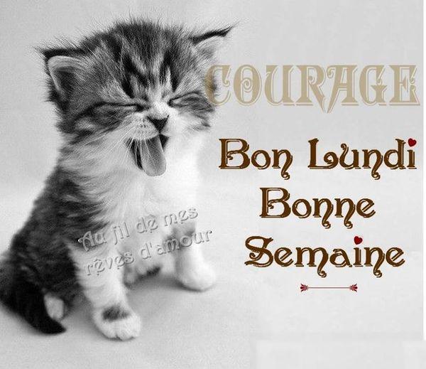 Entrez et tapons la causette (archive 6) ... - Page 35 Large10
