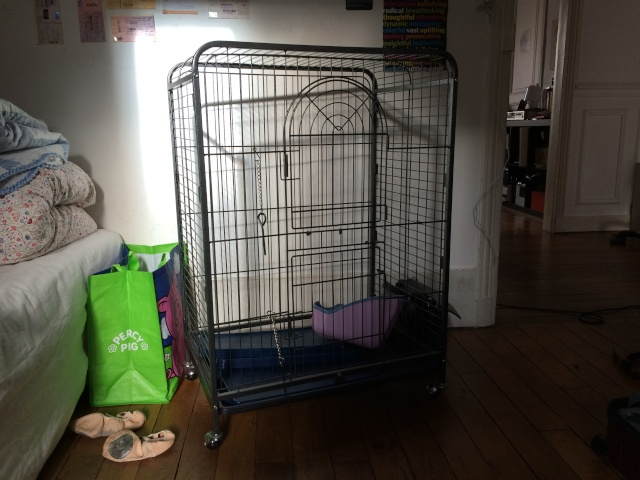 (75/92) Cage perfect M occasion + accessoires + drybed Img_0110