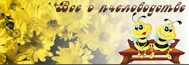 Форум начинающих пчеловодов