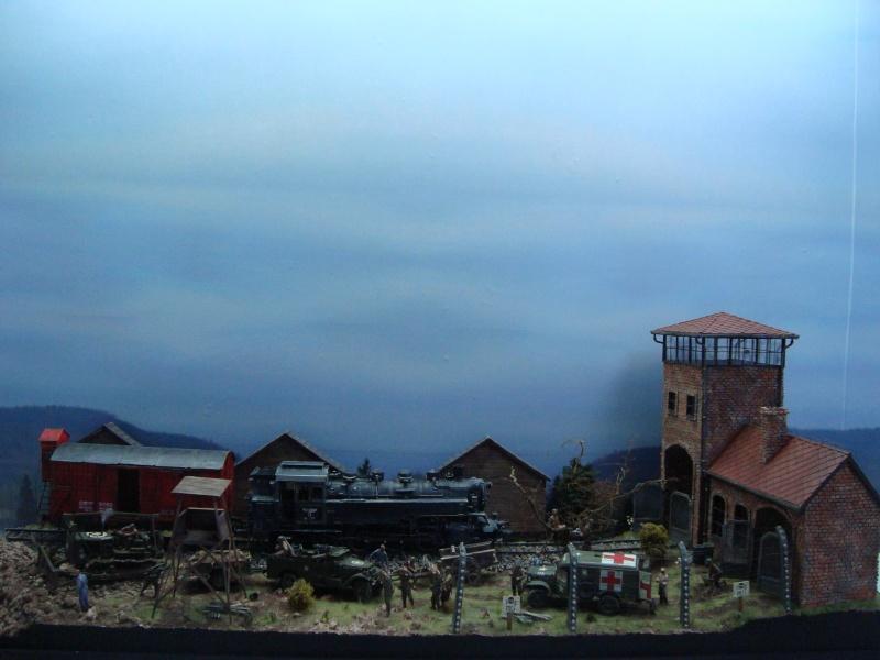 diorama l'horreur des camps Dsc00510