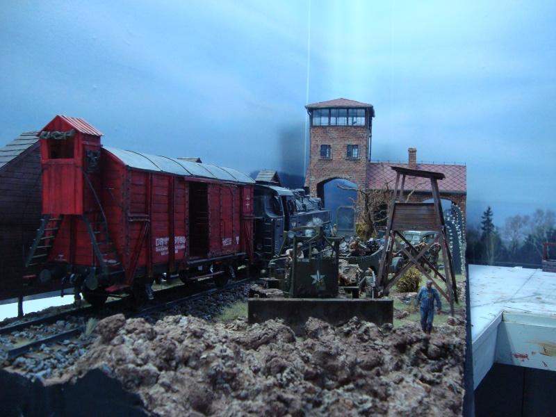 diorama l'horreur des camps Dsc00511