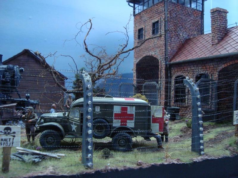 diorama l'horreur des camps Dsc00513