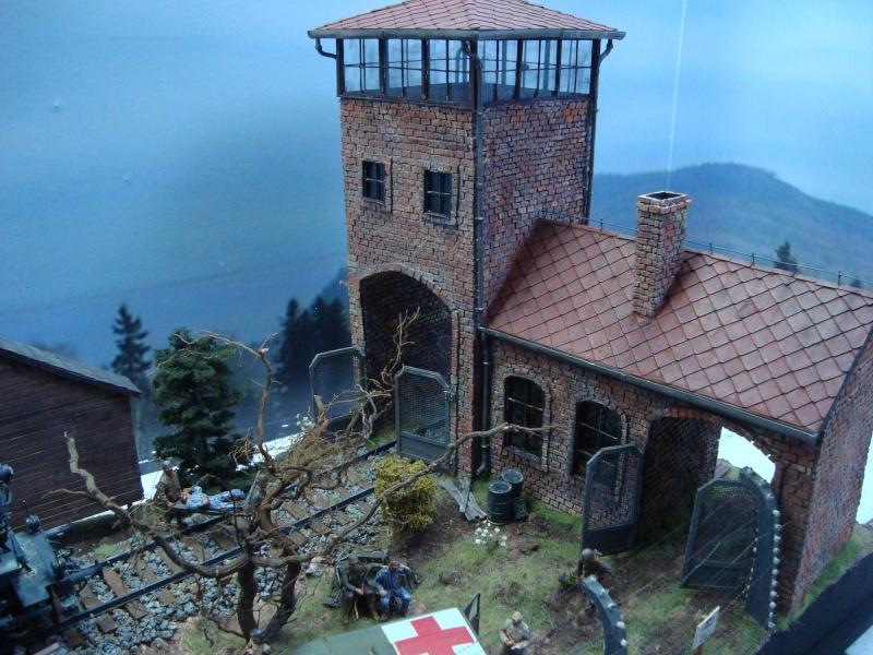 diorama l'horreur des camps Dsc00524