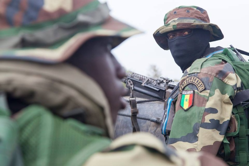 Armée Sénégalaise - Page 7 1111